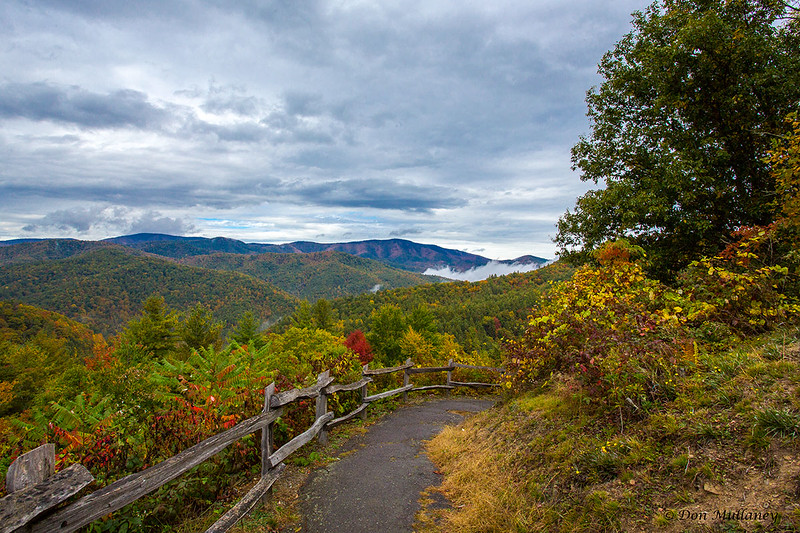 A colorful path under threatening skies - Great Smoky Mtn.NP
