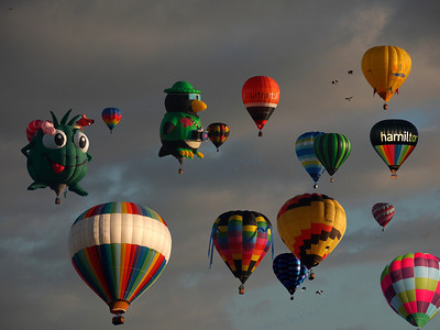 Balloons over the Waikato