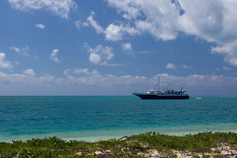 "The ""Florida Fish Finder"", our boat, moored offshore. - Ft. Jefferson, Dry Tortugas"