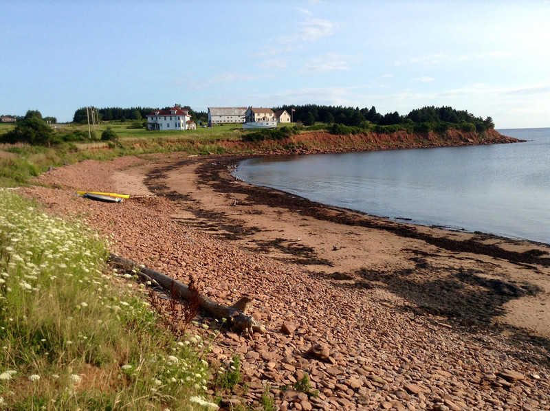 Doyles Cove, PEI - This spot, along the coastal road, in the National Park, has been the most productive for me. Shore birds and gulls congregate in good numbers and variety. (Taken with my IPad)