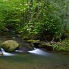 Profile Traile - Grandfather Mountain, NC