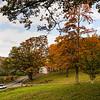 Matney Fall Scene - Matney, NC