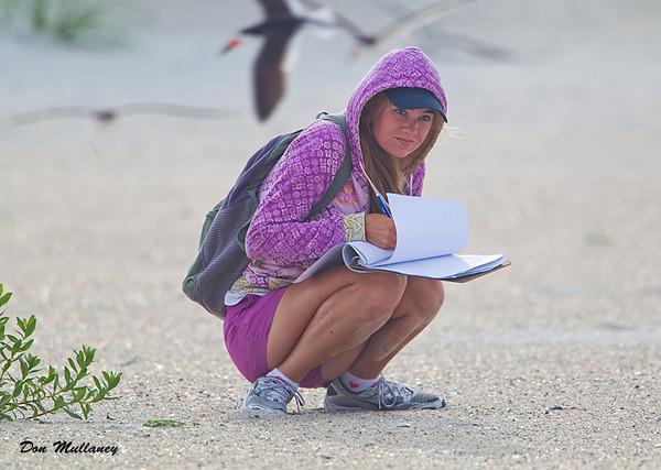 Audubon tech staying low -  Wrightsville Beach, NC