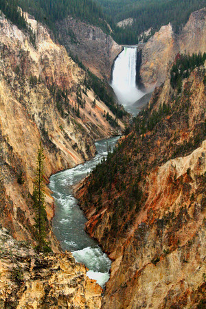 Lower Falls At The Grand Canyon Of The Yellowstone