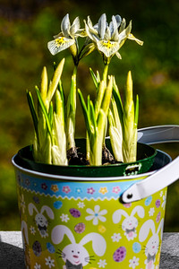 Spring, perhaps