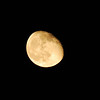 Moon in Waning Gibbous phase.  86% of full.