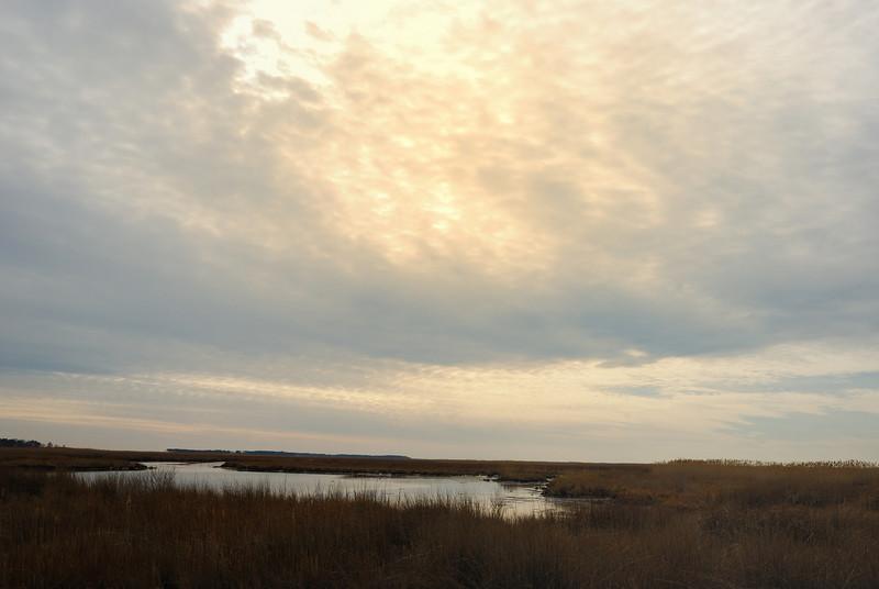 Near Elliott Island, Maryland