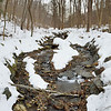 Wissahickon Creek near Forbidden Drive - Philadelphia, March 1, 2014