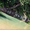 the Winchuck River.