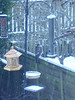 Winter 2010 027
