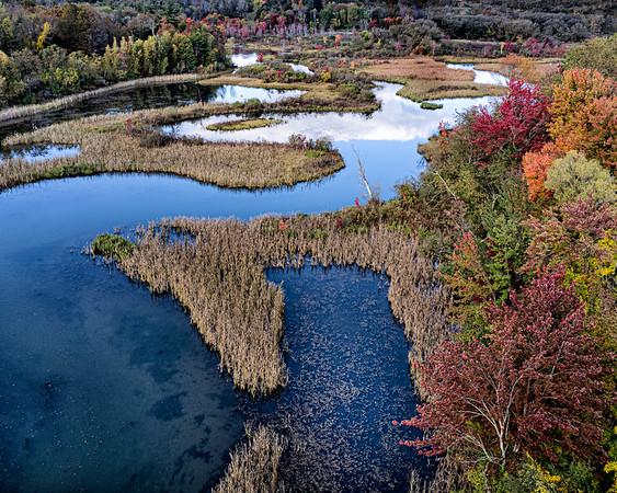 Town Brook marsh, Lanesborough, MA
