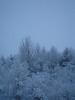 Winter 2010 024