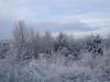 Snow Nov 2010 013