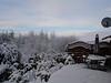 Snow Nov 2010 012