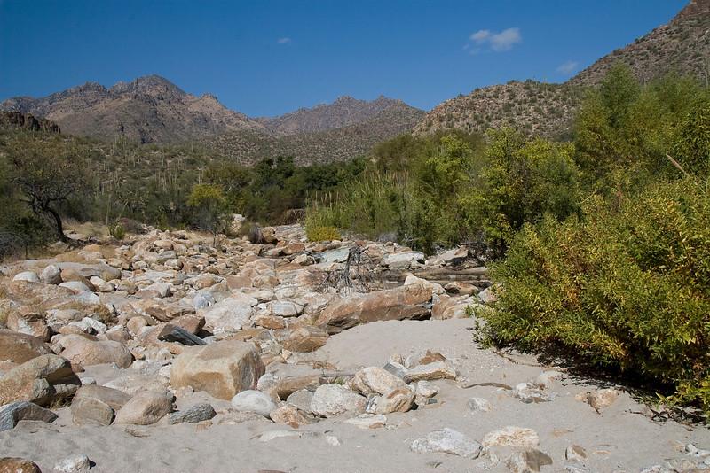 <div align=center>Waterless Wash in Sabino Canyon, Tucson, AZ</div>