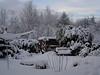 Snow Nov 2010 008