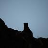 Moongose ouline on a termite mound.<br /> Sombra de topo en un hormiguero de termitas.