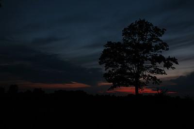 Caesar Creek OH- a sunset tree silhouette.