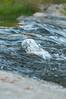 Pednerales_Falls_State_Park-0524
