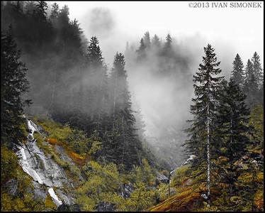 """MAGIC FOREST"",Alaska,USA."