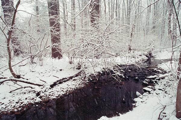 Stream after Winter snow