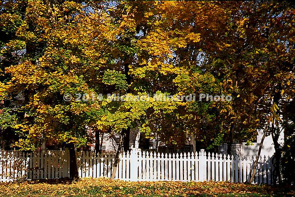White fence covered with colorful Fall trees in Bethesda, MD img013