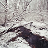 Snow covered forest stream in Rockville, MD  img30230019