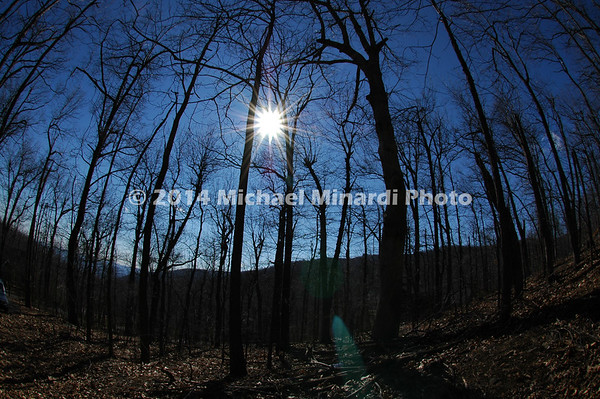 Photo taken at sunset in the Blue ridge Mountains during the Winter Season when there are no leaves on the trees.