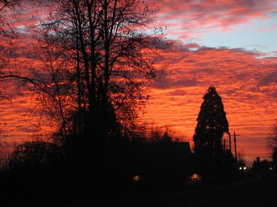 Morning Redness