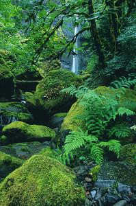Elowah Falls or0701-26or