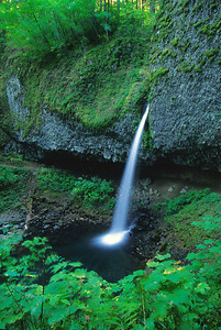 Ponytail Falls or1002_17nr