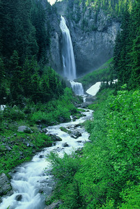 Coment Falls, Mt Rainier wa089917