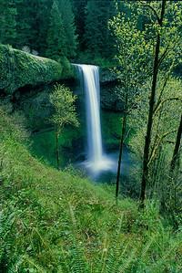 Silver Falls or_34nr