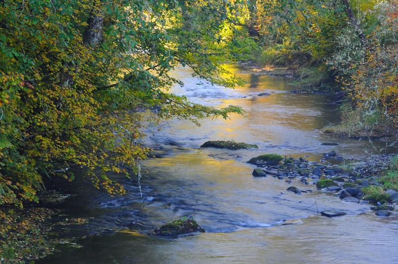 #Northfork Siuslaw River