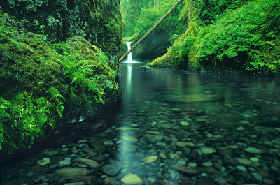 Punchbowl Falls or0899_342or