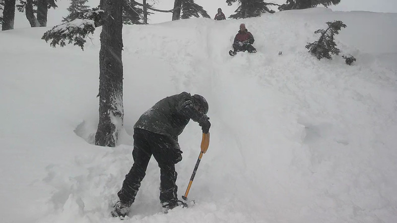 Henry shovel sledding
