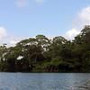 Lake Gatun-2