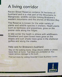Xanthorrhoea Track - Mountains to Mangroves Corridor - Information - Raven Street Reserve - Raven St Reserve & Milne Hill Reserve; West Chermside, Brisbane, Queensland, Australia; 03 October 2012. Photos by Des Thureson