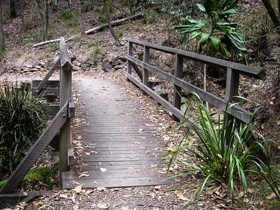 "Alternate Processing: ""Hard Depth"" - Pomax Track - Milne Hill  Reserve - Raven St Reserve & Milne Hill Reserve; West Chermside, Brisbane, Queensland, Australia; 03 October 2012. Photos by Des Thureson"