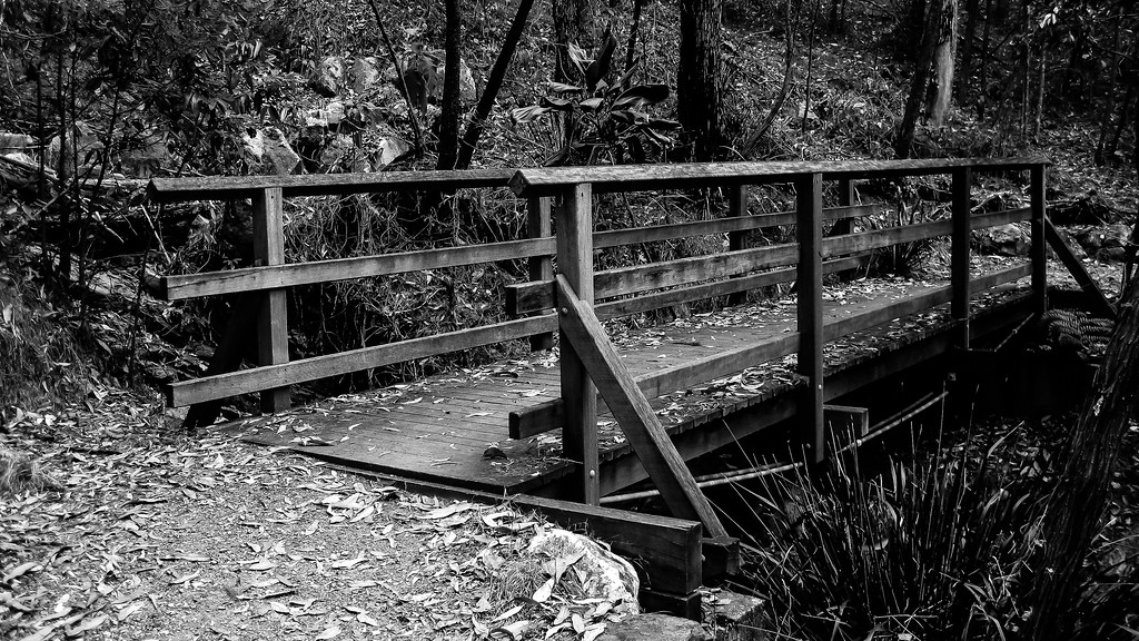 "Alternate Processing: ""Kodak Panatomic X -Exp 1986 Auto"" - Pomax Track - Milne Hill  Reserve - Raven St Reserve & Milne Hill Reserve; West Chermside, Brisbane, Queensland, Australia; 03 October 2012. Photos by Des Thureson"