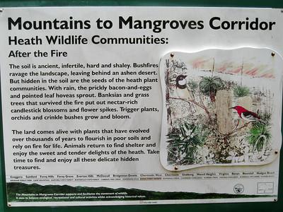 Mountains to Mangroves Corridor - Information - Raven Street Reserve - Raven St Reserve & Milne Hill Reserve; West Chermside, Brisbane, Queensland, Australia; 03 October 2012. Photos by Des Thureson