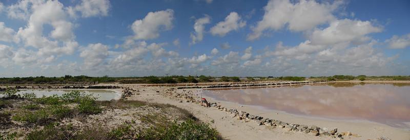 Salt Flats, Progresso Yukatan, August 2009
