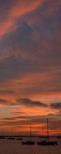 Pillar Point Harbor Sky