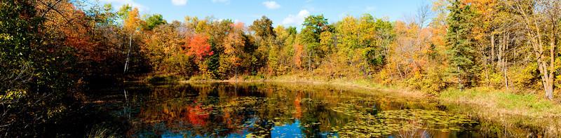 Fall 2009 in Minnesota