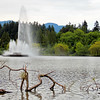 Water Fountain on lake