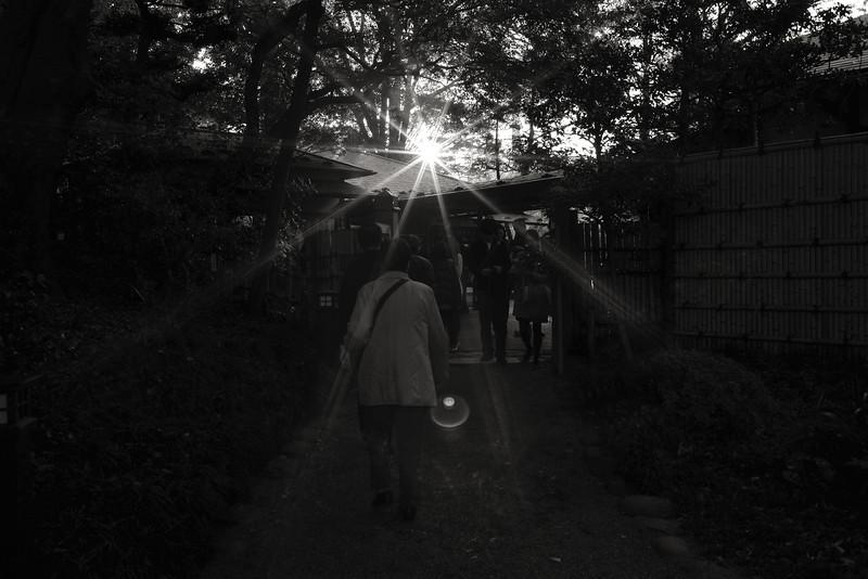 Koishikawa Korakuen Park / Tokyo