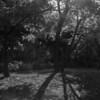 Kasai RInkai Park