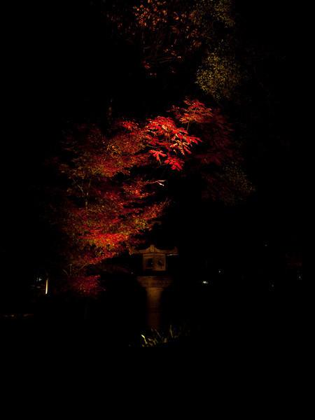 Rikugien Park, Tokyo
