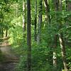 Pokagon trail