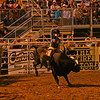 Bull rider stays on